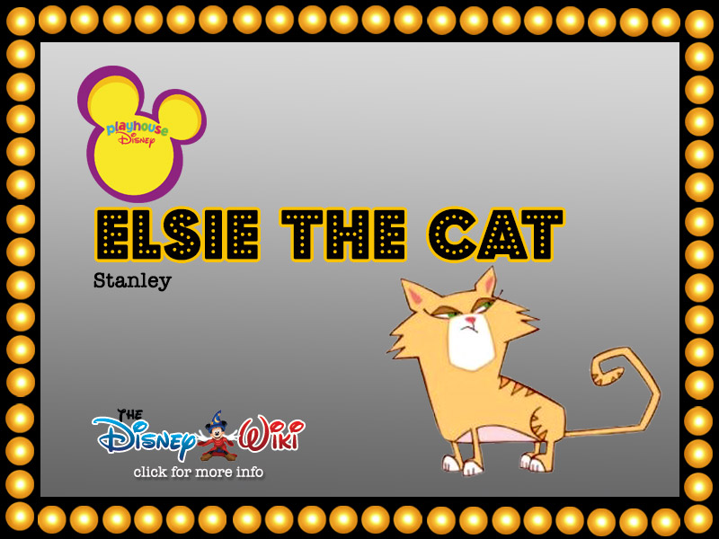 ELSIE THE CAT | HyndenWalch.com